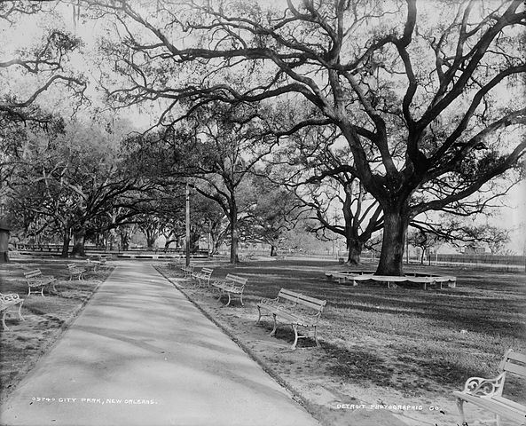 City Park, el pulmón verde de New Orleans